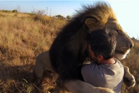 The Top 5 Viral Video Lessons GoPro Has Taught Us
